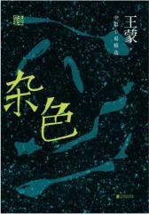 王蒙精选集:杂色