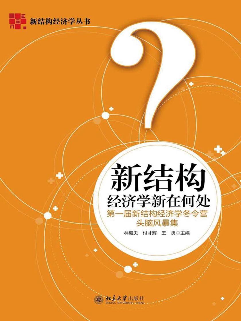 新结构经济学新在何处:第一届新结构经济学冬令营头脑风暴集(新结构经济学丛书)