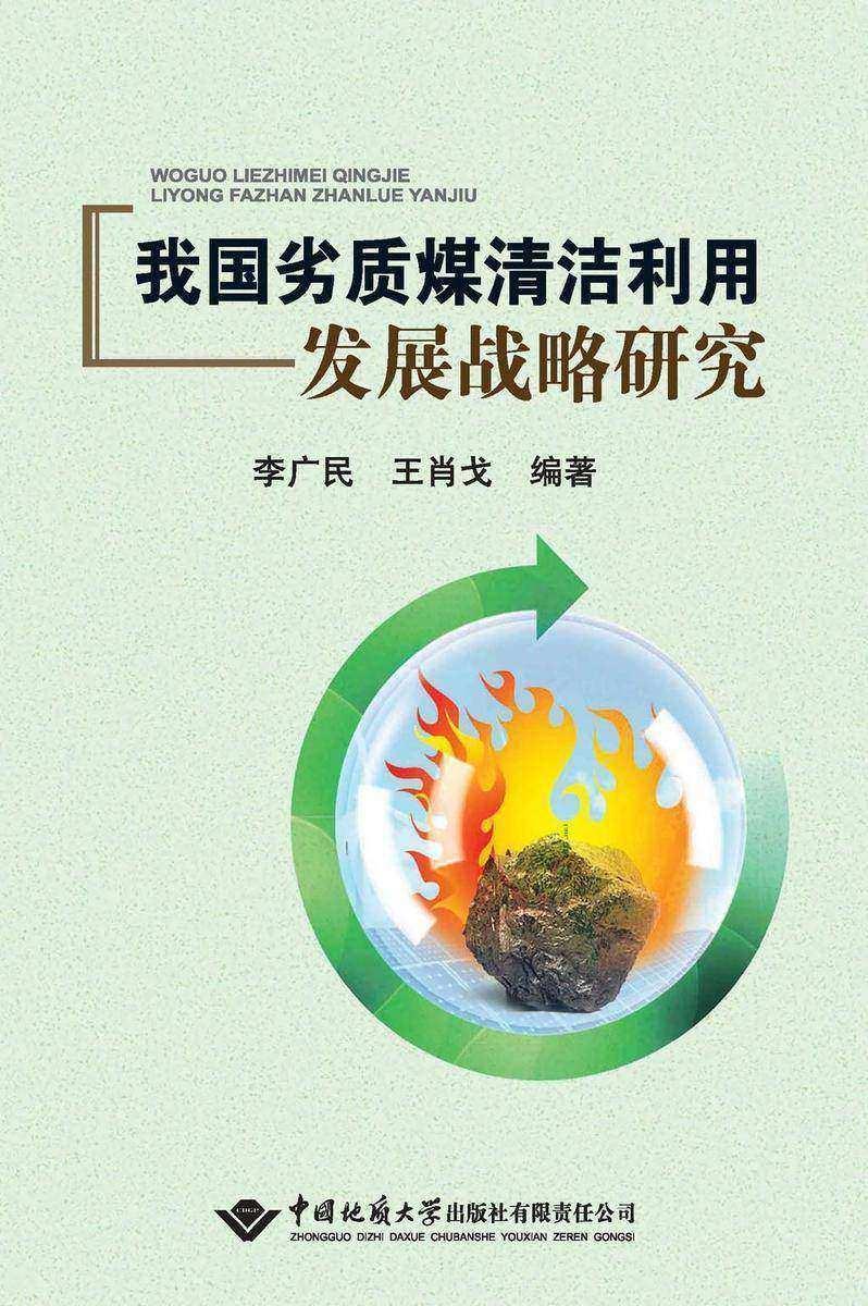 我国劣质煤清洁利用发展战略研究