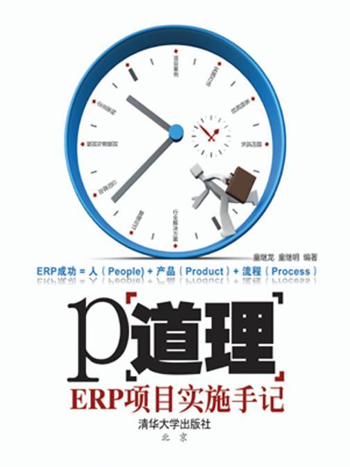 P道理——ERP项目实施手记