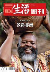 三联生活周刊·多彩非洲(2016年15期)(电子杂志)