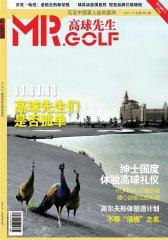 高球先生 月刊 2011年11期(电子杂志)(仅适用PC阅读)