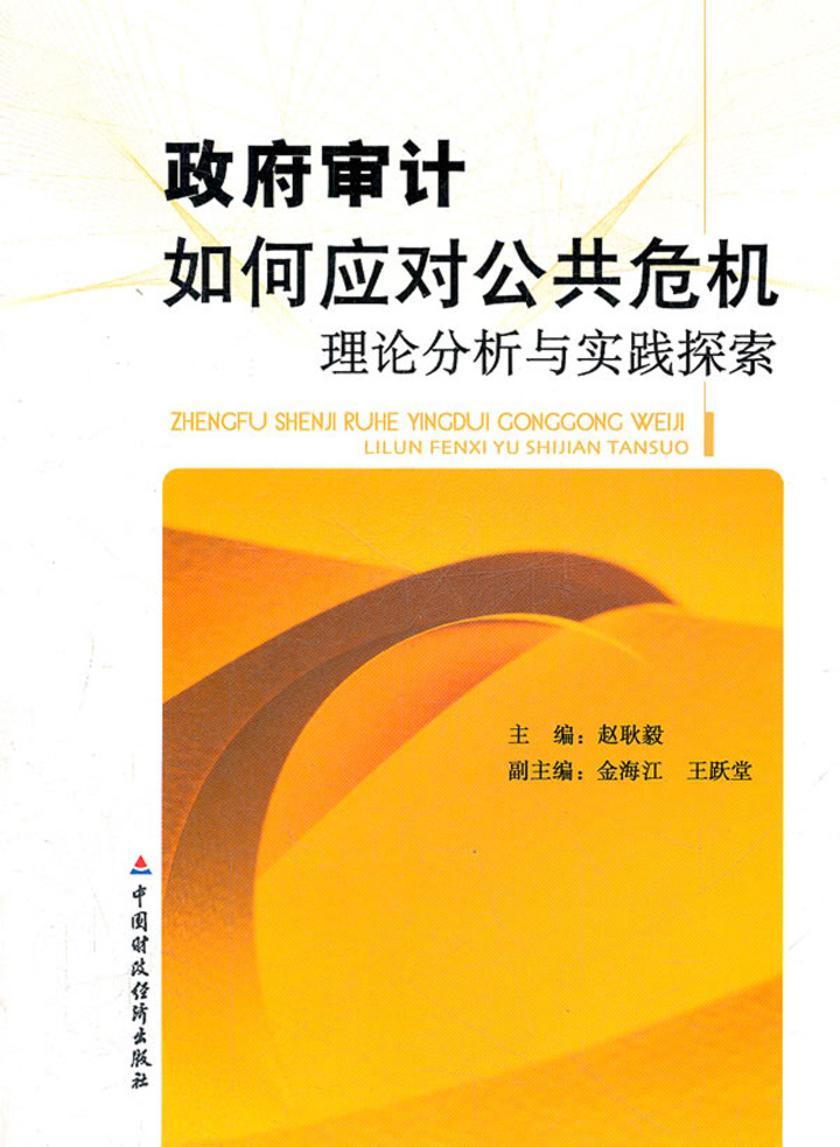政府审计如何应对公共危机:理论分析与实践探索