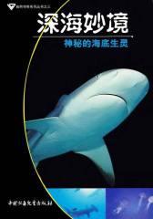 深海妙境:神秘的海底生灵(仅适用PC阅读)