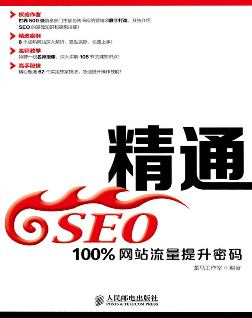 精通SEO——100%网站流量提升密码