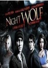 夜狼(影视)