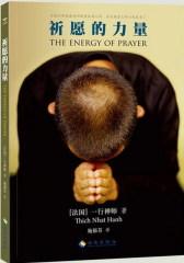 祈愿的力量(试读本)