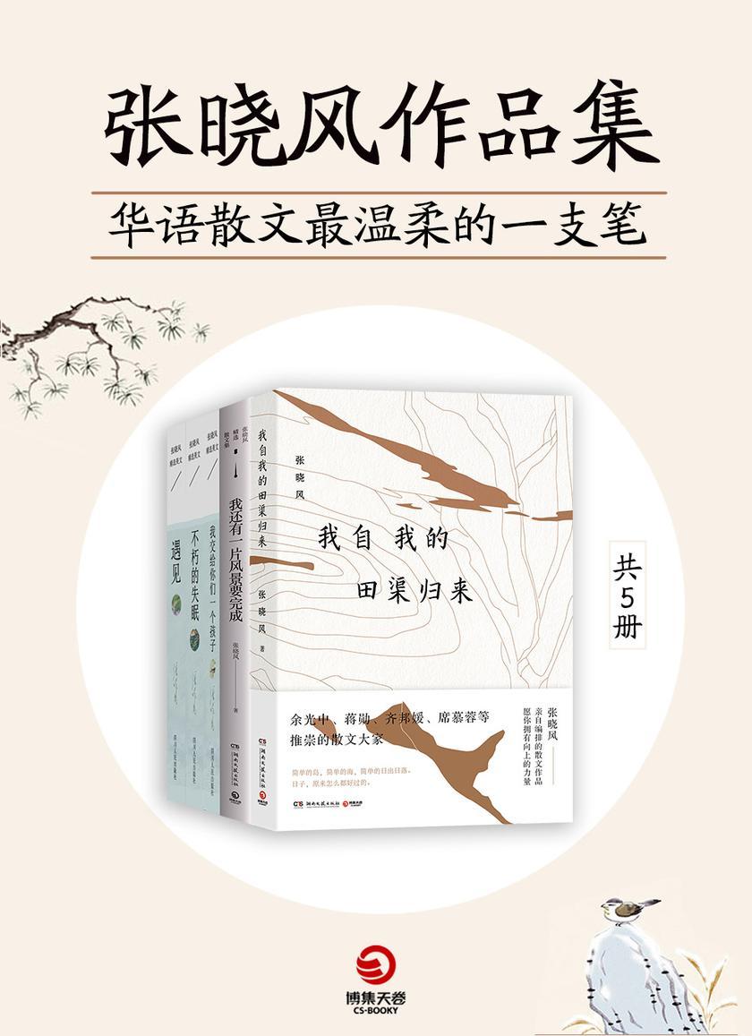 华语散文最温柔的一支笔:张晓风作品集(共5册)