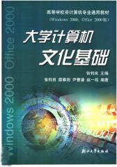 大学计算机文化基础:Windows 2000、Office 2000版(仅适用PC阅读)
