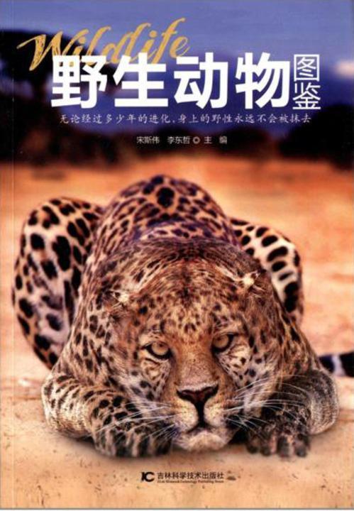 野生动物图鉴