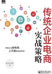 传统企业电商实战策略(试读本)(仅适用PC阅读)