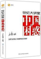 中国的困惑(试读本)