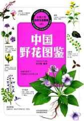 中国野花图鉴