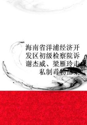 海南省洋浦经济开发区初级检察院诉谢杰威、梁雁玲走私制毒物品案