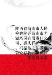 陕西省渭南市人民检察院诉渭南市尤湖塔园有限责任公司、惠庆祥、陈创、冯振达非法吸收公众存款,惠庆祥挪用资金案