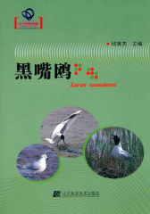辽宁省优秀自然科学著作——黑嘴鸥