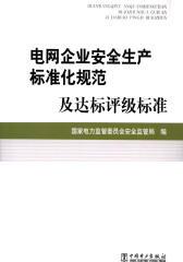 电网企业安全生产标准化规范及达标评级标准