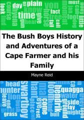 The Bush Boys