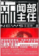 新闻部主任(揭秘电视台里的权利规则,做人做官做新闻)(试读本)