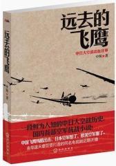 《远去的飞鹰》中日大空战浴血往事(试读本)