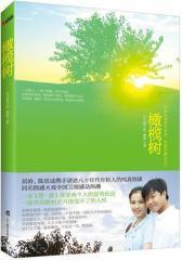 橄榄树——刘涛、陈思成携手讲述八十年代生人纯真情感同名情感大戏全国卫视感动热播(试读本)