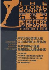 《石猴子》(试读本)