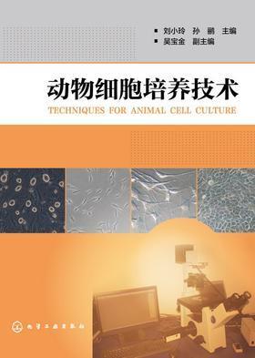 动物细胞培养技术