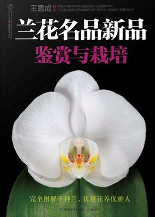 兰花名品新品鉴赏与栽培