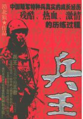 兵王(试读本)