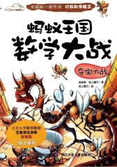 蚂蚁王国数学大战·夺宝大战