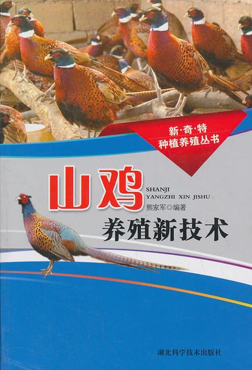 山鸡养殖新技术(新奇特种植养殖丛书)