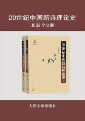 20世纪中国新诗理论史