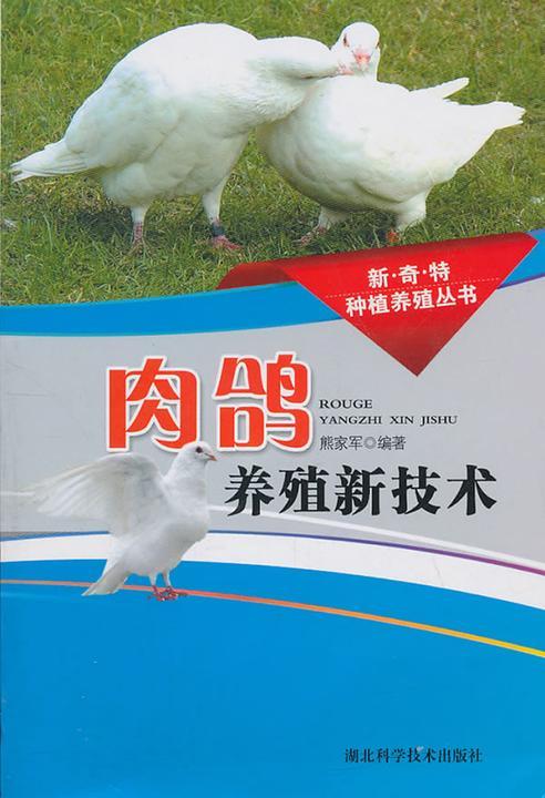 肉鸽养殖新技术(新奇特种植养殖丛书)
