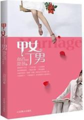 甲女丁男(试读本)