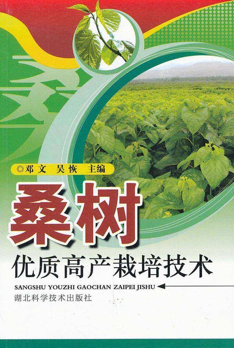 桑树优质高产栽培技术