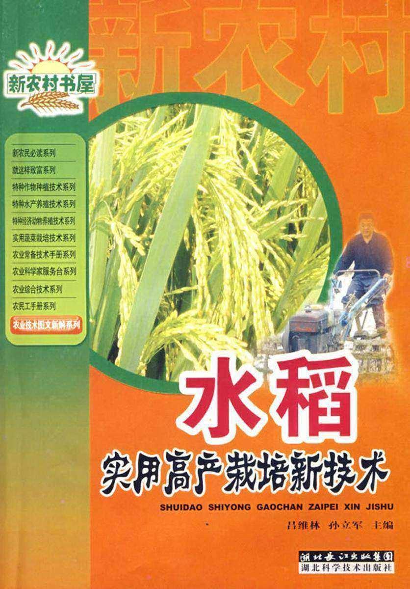水稻实用高产栽培新技术