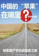 """中国的""""苹果""""在哪里?"""