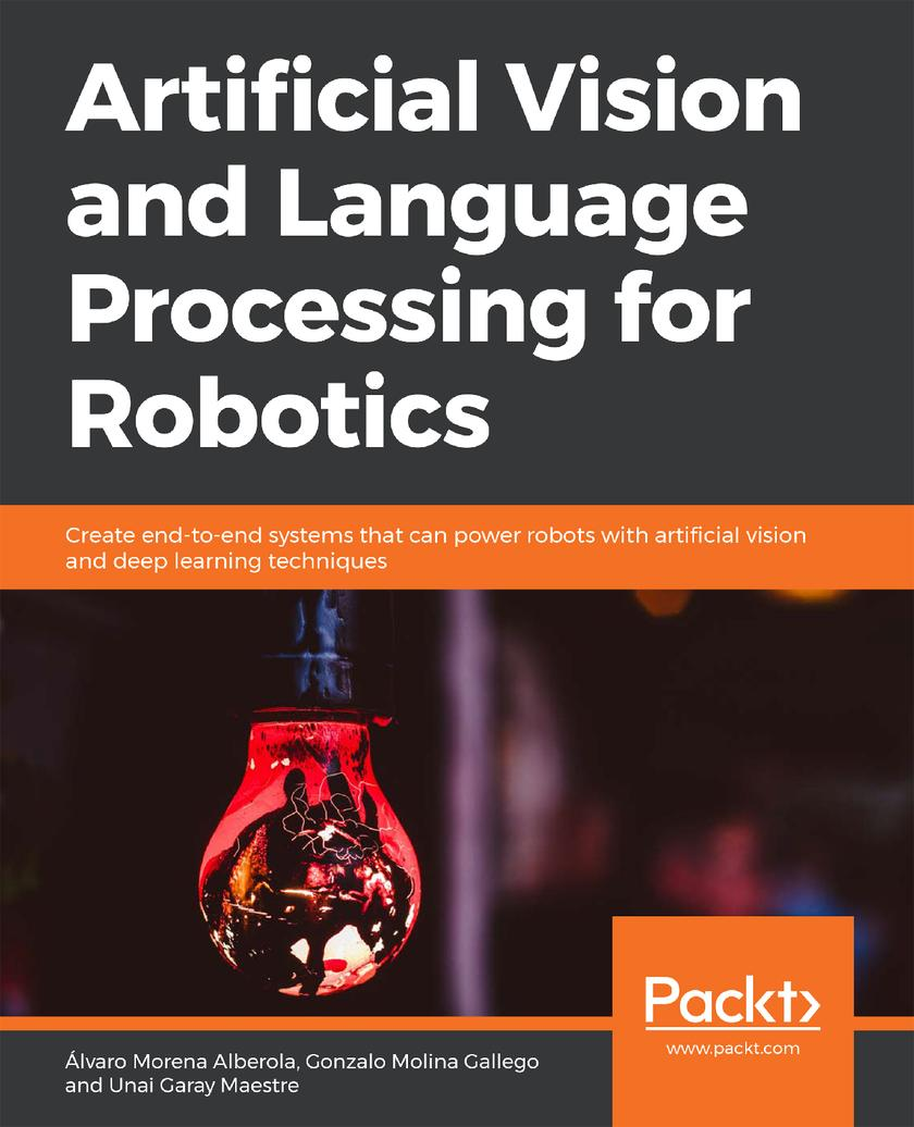 Artificial Vision and Language Processing for Robotics