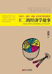 王二的经济学故事(试读本)