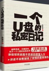 一个U盘的私密日记(试读本)