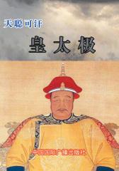 天聪可汗——皇太极