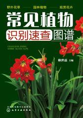 常见植物识别速查图谱