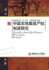 中国农地集体产权制度研究