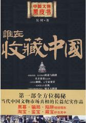 谁在收藏中国:中国文物黑皮书(  部全方位揭秘当代中国文物市场真相的长篇纪实报道)(试读本)
