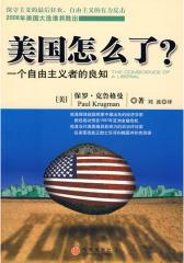 美国怎么了:一个自由主义者的良知(2008年度诺贝尔经济学奖得主  力作)(试读本)
