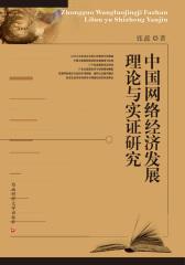 中国网络经济发展理论实证研究