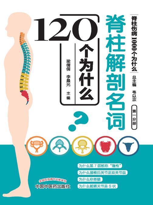 脊柱解剖名词120个为什么