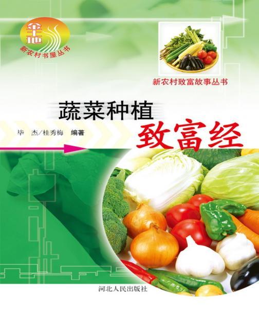 蔬菜种植致富经