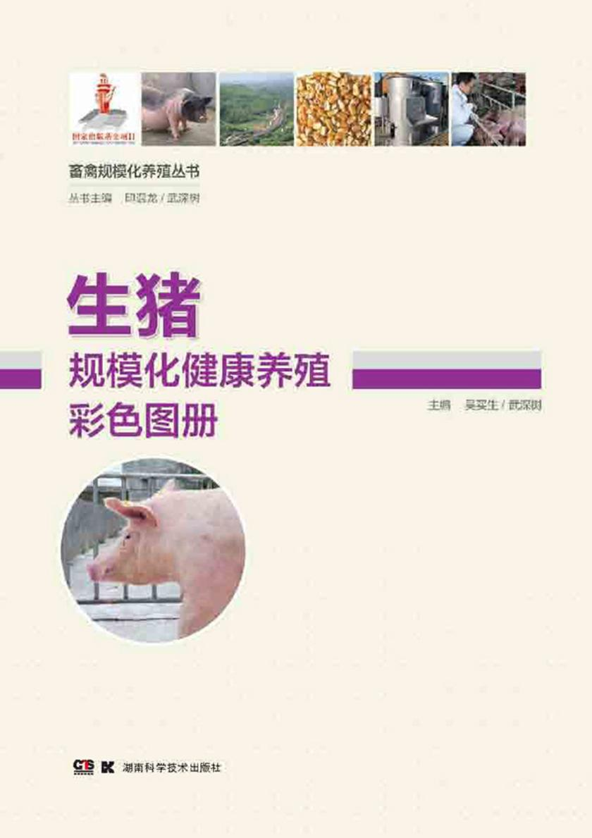 畜禽规模化养殖丛书——生猪规模化健康养殖彩色图册