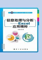 信息处理与分析——Excel应用精粹